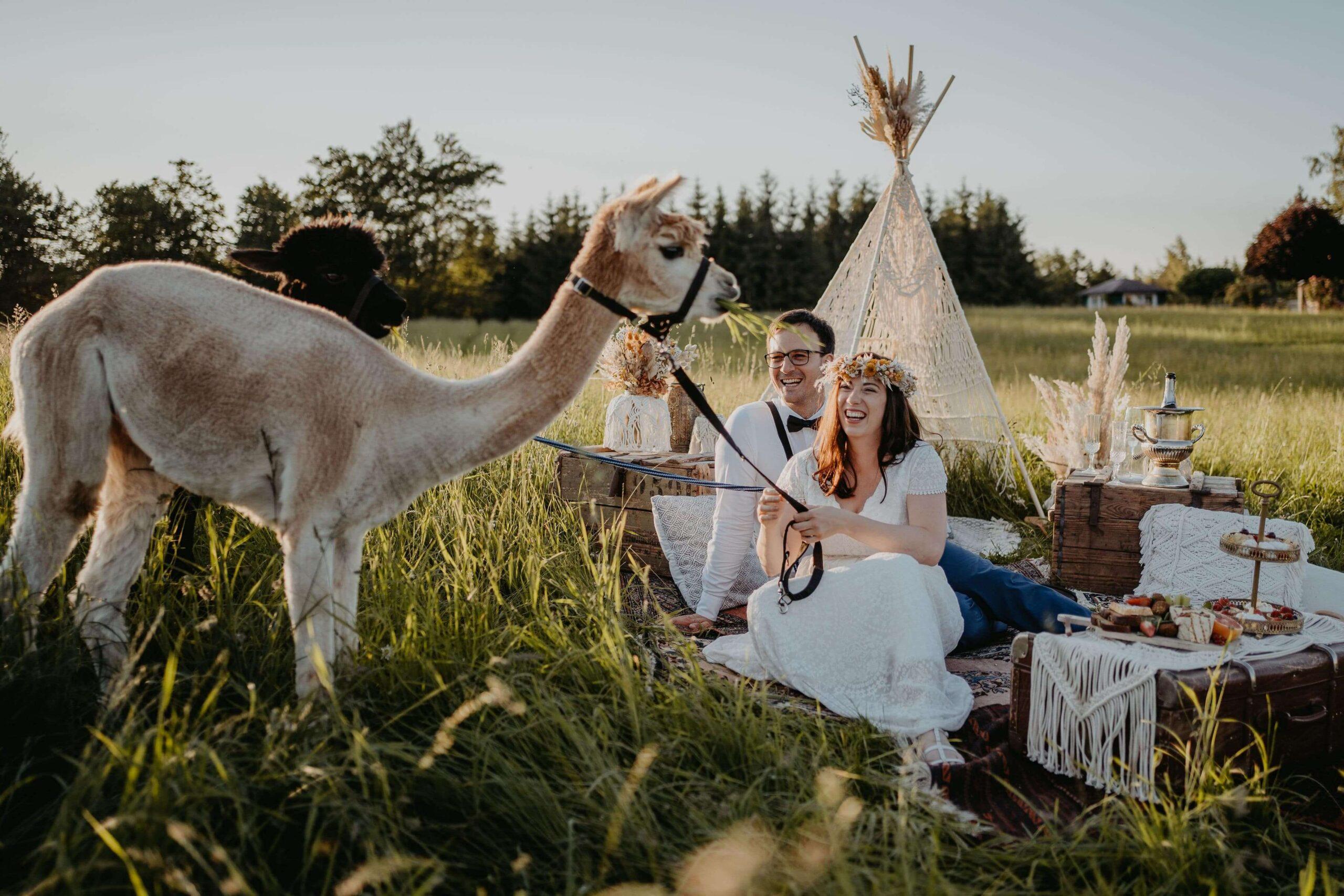 Boho Alpaka Hochzeit